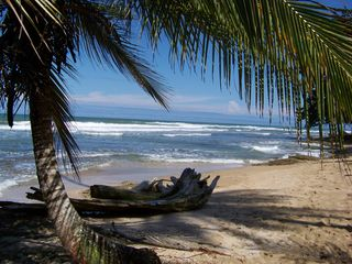 Puerto Viejo bungalow photo - A relaxing walk on the beach?
