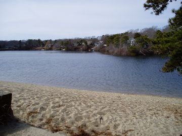 Walk to Long Pond Beach to swim, picnic or fish