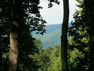 Asheville cottage rental - View from the deck overlooking Elk Mountain