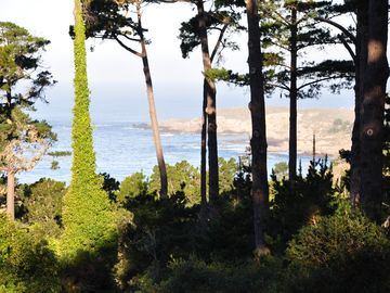 Carmel bungalow rental - South coast and Point Lobos.