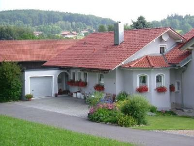 Children and pet friendly holiday apartment in the Bay. Forest