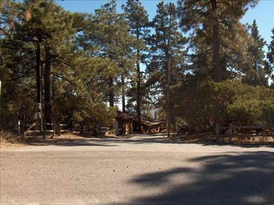Idyllwild cabin rental - View of cabin from the road