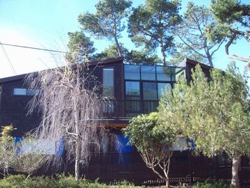 Cambria cottage rental - Pine Ridge in the trees.