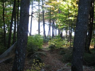 Green Lake cabin photo - Path from cabin to the lake (cabin is about 100 ft back from lake)
