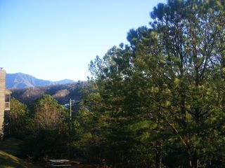 Gatlinburg condo photo - View from balcony in the Summer