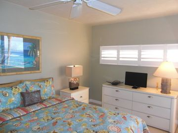 Lots of Drawer Space, Plantation Shutters, Flat Screen TV in Master Bedroom