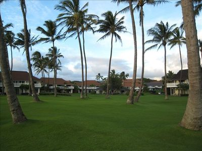 Enjoy the palm trees and the grassy area while you watch the ocean waves!