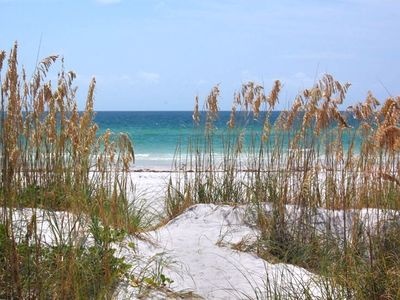 Our dunes at the Gulf of Mexico.