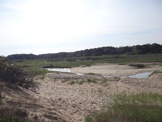 Wellfleet condo photo - Tidal stream.
