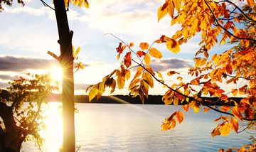 Fall is a wonderful time to visit Leelanau.