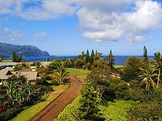 Princeville house photo - Aerial View (our house is on the right). The road is paved, it's just wet here!