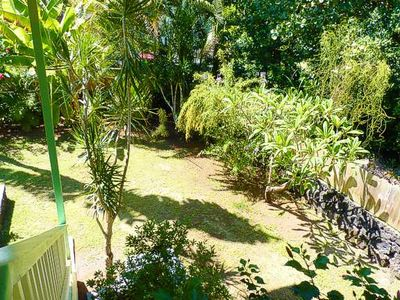 Kapoho house rental - The LUSH Backyard