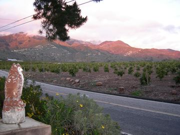 Ojai house rental - The front yard faces orange groves and the Las Padres National Forest.