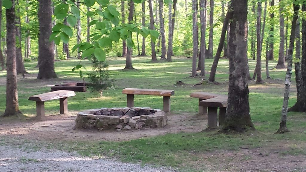 Free Firewood Supplied for Fire Pit