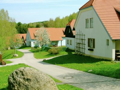 """Spacious apartment in the midst of the idyllic hillylandscape of """"Waldviertel"""""""