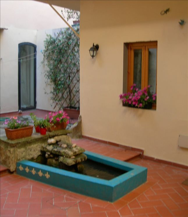 Courtyard/garden, view 1