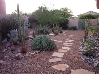 Marana house photo - serene cactus garden on side of house