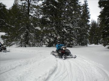Great times skiing and snowmobiling in the Sierra's