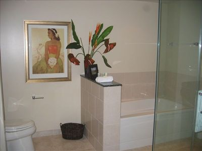 Luxurious and Spacious Soaking Tub and Glass Walled Surround Shower