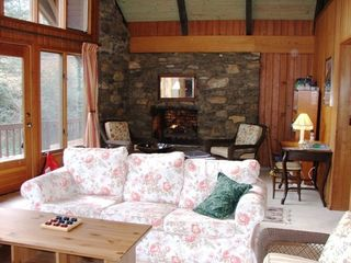 Living room w TV, gas fireplace & large windows - Asheville chalet vacation rental photo