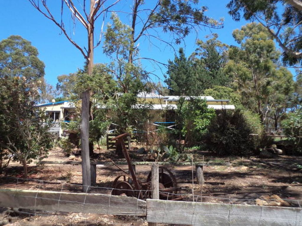 Where The Gum Trees are