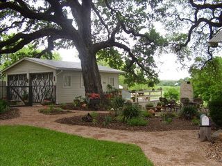 New Braunfels estate photo - Gruene Estate Cottage under giant oak
