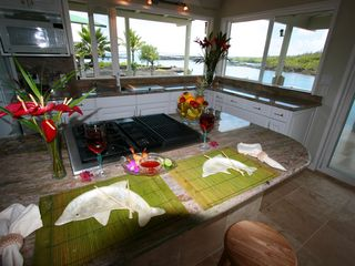 Kapoho house photo - Fully equipped gourmet kitchen with views of the snorkel ponds and ocean beyond.