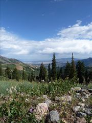 Eden house photo - Hike up top Powder Mountain where the views are spectacular!
