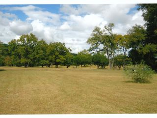 Dripping Springs house photo - Pasture Areas