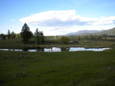 Multiple wildlife ponds located on the property.