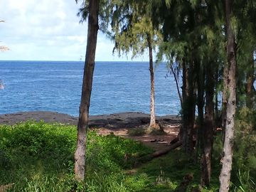 Hilo house rental - View from lanai as of October 2014. Great place to watch for whales.