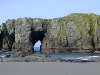 Bandon house photo - Elephant Rock. Do you see the elephant?