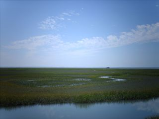 Cape Charles house photo - Atlantic side, marsh and in lands~~breath taking!