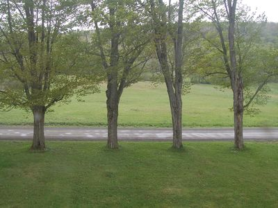 Front yard and adjacent field- which is also part of the property.