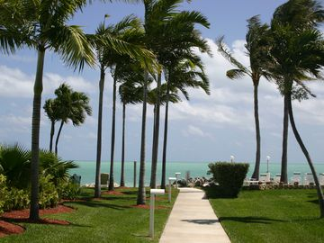 Beautiful palm trees, tropical bushes, flowers and crystal clear ocean waters.