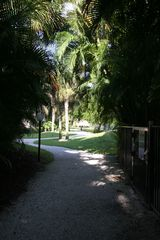 Delray Beach apartment photo - Walkway to Swimming pool