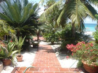 Aruba studio photo - House garden, house entry Garden view not good?Ask for apartment with ocean view