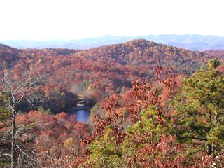 Brevard cottage photo - Betty Kay Lake from the top of Sherwood Forest in Brevard