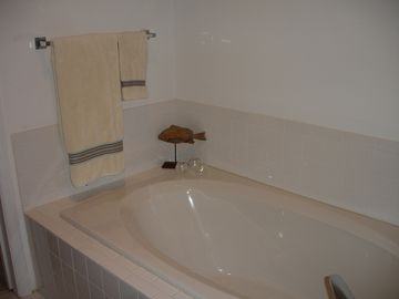 Master bath includes dual sinks, shower and a wonderful spa tub