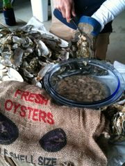 Edisto Beach house photo - Oyster Roast