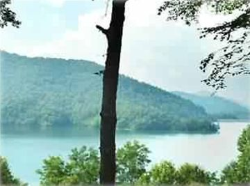 Lake Nantahala cabin rental - Fabulous view!