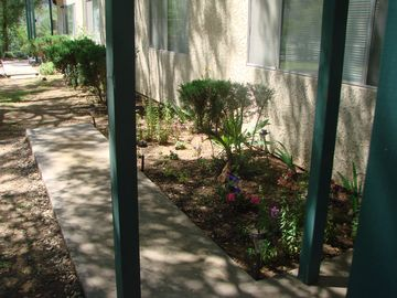 Mariposa APARTMENT Rental Picture