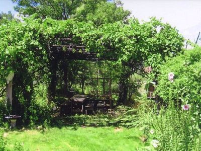 The grape arbor