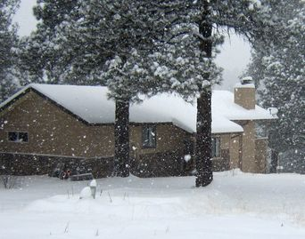 Flagstaff house rental - Welcome to the Tree House!