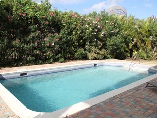 Atlantic Shores apartment photo - Beautiful oleander flowers bathe in sunlight on the southern side of the pool.