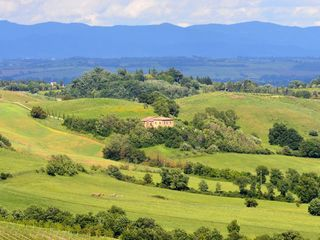 Montepulciano FARMHOUSE Rental Picture