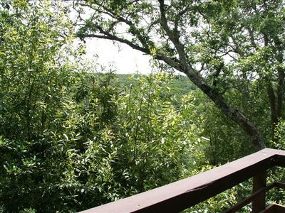 Amazing Treetop Views from Living Room Deck