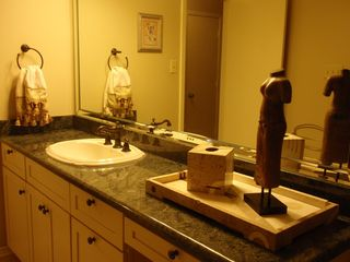 Arlington house photo - Gorgeous Bathroom with Granite
