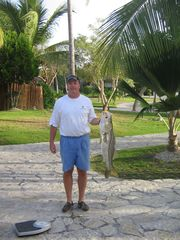 Punta Cana villa photo - This 18 lb Snook was caught in our backyard.