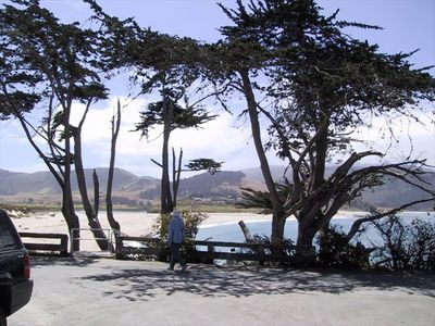 Steps away to Carmel River Beach Park, great to stroll, lounge, bird watch